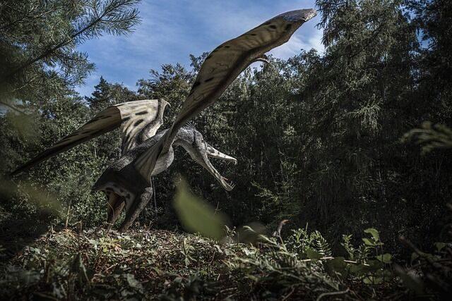 pterozaury, skrzydła, pióra